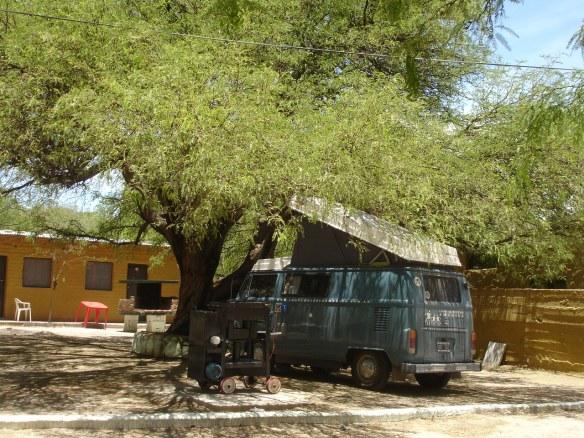camping amaicha del valle (12)