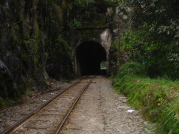 14e-de Hidroelectrica caminando a Aguas Calientes (50)