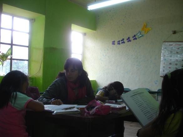 MECHI TEACHER