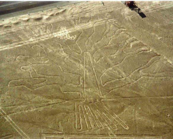 """""""El Arbol"""" de las lineas de Nazca"""