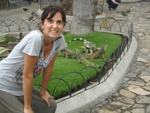 plaza de las iguanas