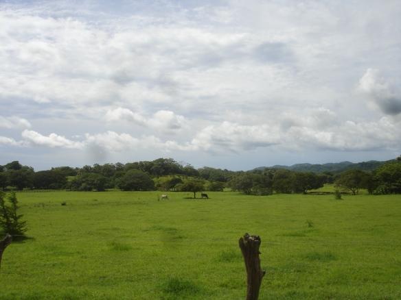 18h-Camino a Tamarindo (2)