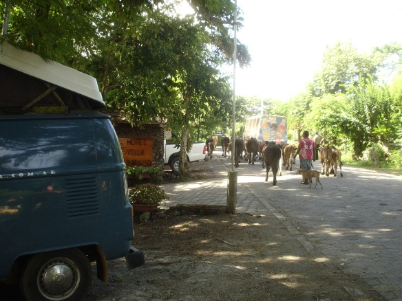 19b-Ometepe 1era dormida villa paraiso (4)