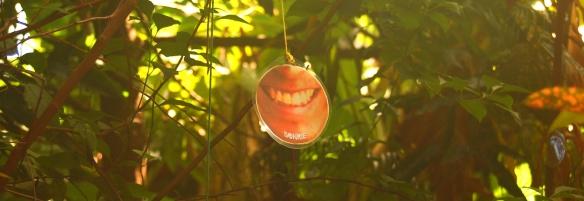 + Sonrisas