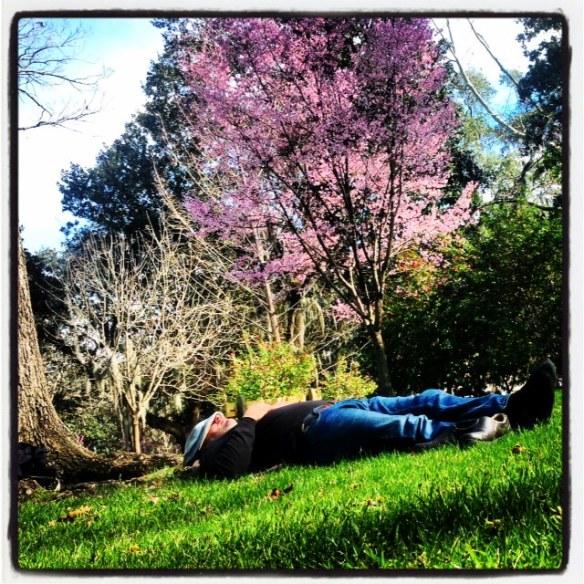 24d-siesta forsyth park savannah