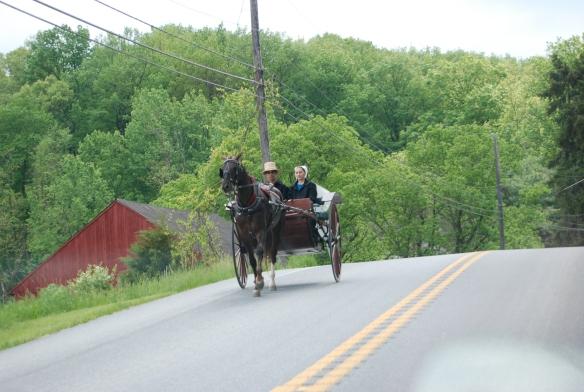 26b-Leesburg y camino al sur x la 372 quizas.. PA (53)